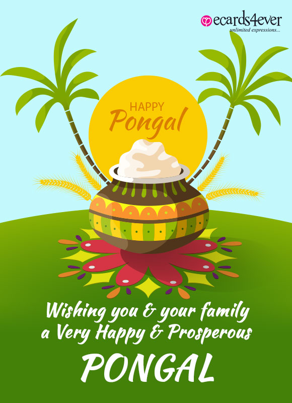Best Pongal Wishes